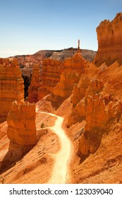 A trail through the spectacular orange landscape of Bryce Canyon, Utah, USA