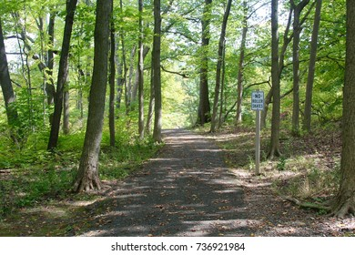 The trail in the wooded area of the park.