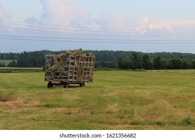 A trailer full of hay waiting to be brought to the farm