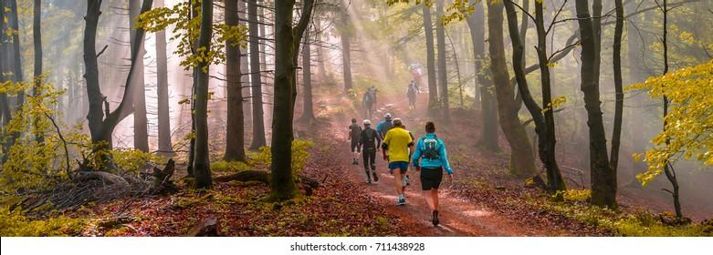 Trailrun panorama through a forest in autumn