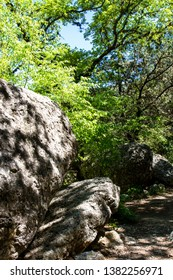 Trailside boulders and trees at Lost Maples State Natural Area in the Texas Hill Country