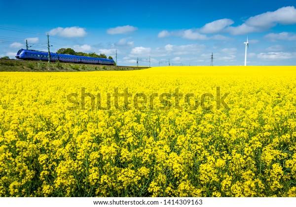 Train along rapeseed field next to a wind turbine in Skåne, Sweden.