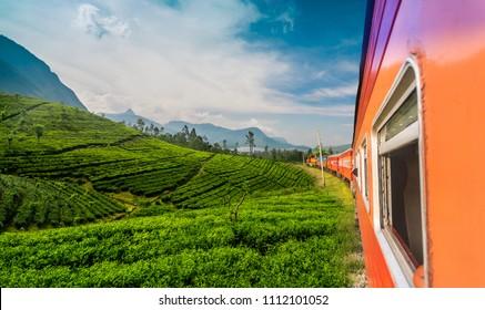 Train to Badulla travels close to tea plantations at mountain region in Sri Lanka