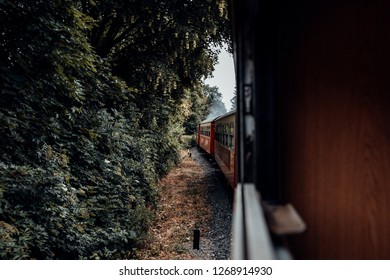 A train journey in the direction of the boulders through the forest with a view on the Wagons