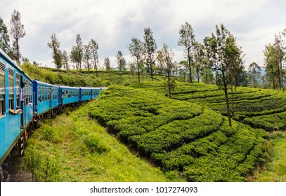 Train ride from Ella  to Kandy among tea plantations in the highlands of Sri Lanka