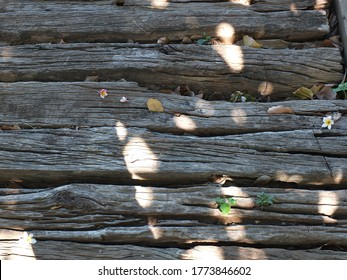 The train sleepers are horizontal, with wood grain and black wood surfaces, with sunlight shining on the leaves on the wood surface.