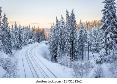 Train (t-bane) railway trough winter forest at sunset in Oslo, Norway.