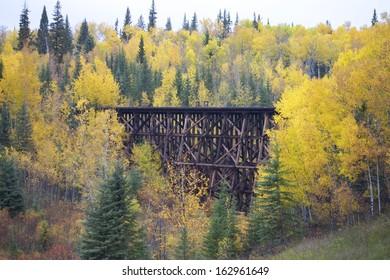 Train Tracks Trestle