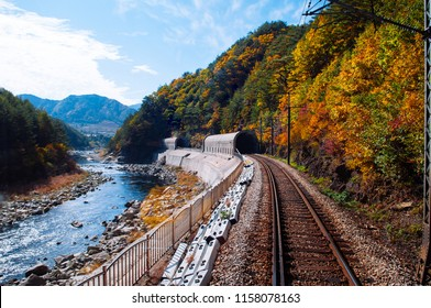 Train tracks and tunnels along stream and autumn forest Baekdudaegan Mountain Range Canyon, famous tourist train route for autumn & winter between Buncheon - Cheoram stations