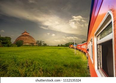 Train travels on paddy fields at Anuradhapura, Sri Lanka