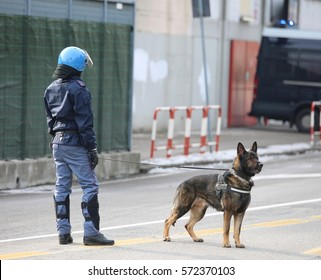 trained police dog chasing drug dealers and concealed explosives on the road