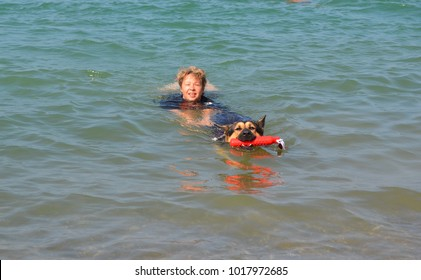 Training a dog in the rescue service on the water