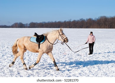 Training of the horse in winter