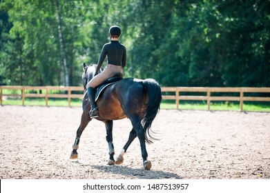 Training process. Young teenage girl riding bay horse on arena at equestrian school. Colored outdoors horizontal summertime image with filter. View from backside