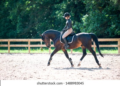 Training process. Young teenage girl riding bay trotting horse on sandy arena practicing at equestrian school. Colored outdoors horizontal summertime image with filter