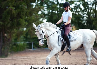 Training process. Young teenage girl riding trotting gray horse on sandy arena practicing at equestrian school. Colored outdoors horizontal summertime image with filter