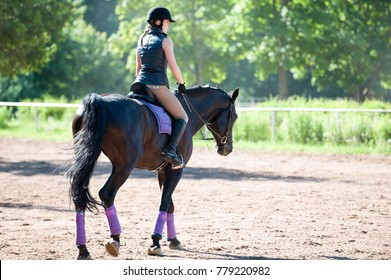 Training process. Young teenage girl riding a horse on arena at equestrian school. Colored outdoors horizontal summertime image. View from backside.