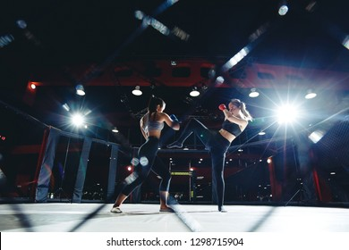 Training young women in ring mma octagon cage, kick and apercod hand.