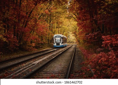 Tram at golden forest autumn tunnel. Electric city transport in Moscow, Russia