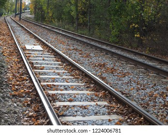 Tram track in the city among the trees, autumn leaves