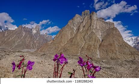 Trango Towers and Baltoro Glacier Karakorum Pakistan, K2 Base Camp