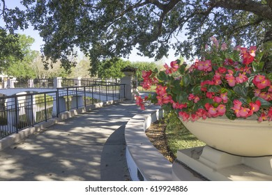 Tranquil area in a city/Orlando Florida/Residential area and lake in an East Cost City