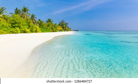 Tranquil beach scenery. Exotic tropical beach panorama for background or wallpaper. Amazing summer landscape, calm sea water and palm trees under blue sky and white sand. Vacation and holiday concept