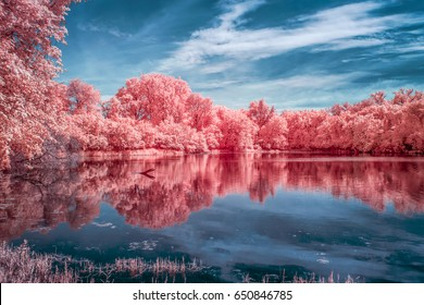 Tranquil color infrared waters of Marsh Lake at the Minnesota Valley National Wildlife Refuge.