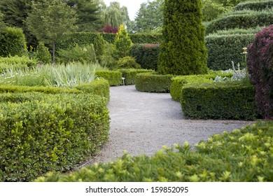 Tranquil Garden Walk