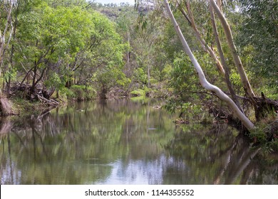 Tranquil Ibis creek near Irvinebank on the Atherton Tableland in Queensland, Australia