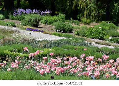 Tranquil look on botanical garden in spring bright sun