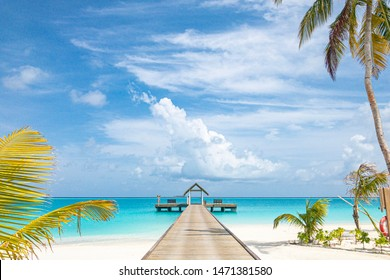 Tranquil Maldives beach with jetty and water villa and palm trees over blue sea view. Amazing tropical landscape, perfect island beach. Summer vacation and holiday banner concept