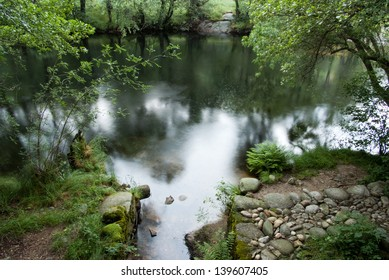Tranquil river surrounded by vegetation