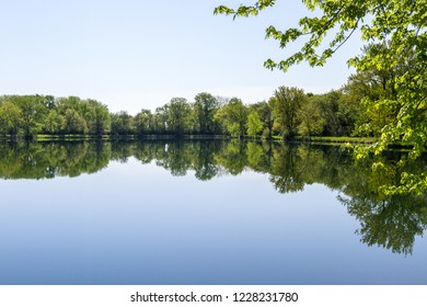 tranquil scene with vivid green spring trees reflecting perfectly on the calm surface of a pond