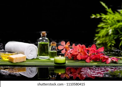 tranquil spa scene- red orchid with towel, candle with ,green plant palm, bottle oil ,black stones