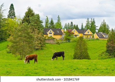 Tranquil view of a row of houses and cows over forest and cloudy sky.