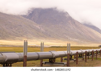 The Trans-Alaska oil pipeline is seen from the Dalton Highway. The pipeline transports crude oil from Prudhoe Bay, Alaska to Valdez, Alaska.