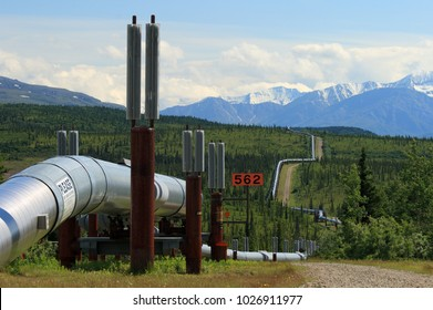 Trans-alaska pipeline in the taiga