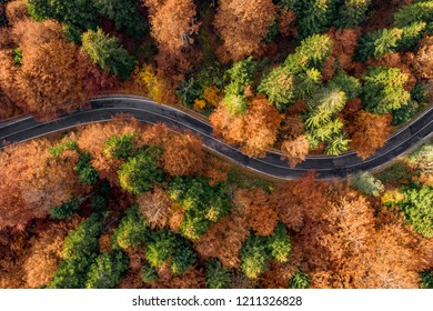 Transfagarasan winding road in the fall