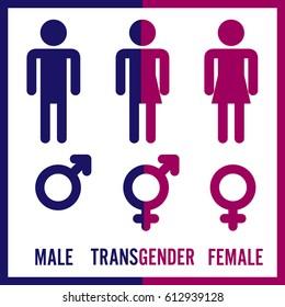 Transgender Male. Set Of Symbols. Isolated On White Background. Unisex. Stylized Human Icon Silhouettes. Stock