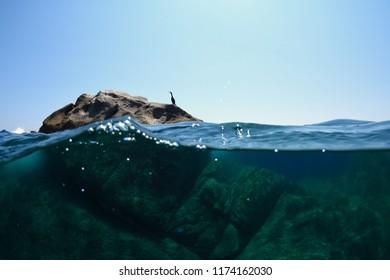 translucent sea in Corsica