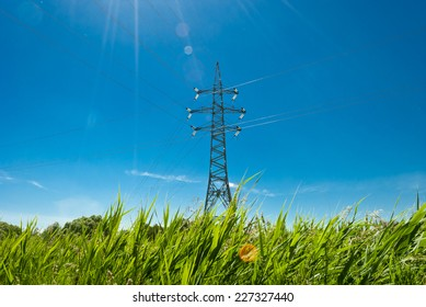 transmission line on a background of grass and sky