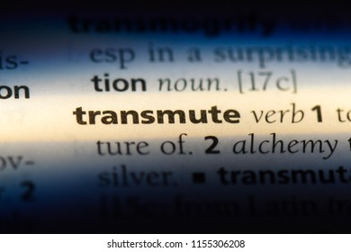 transmute word in a dictionary. transmute concept.