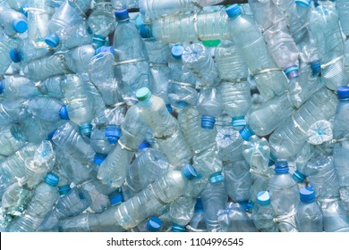 Transparent blank plastic bottles with blue lids