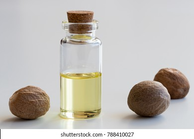 A transparent bottle of nutmeg essential oil with nutmeg seeds on white background
