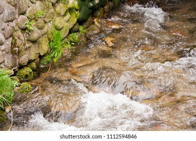Transparent cold water of a mountain river flows between picturesque summer stones against a background of green trees close up.