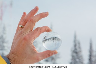Transparent glass ball reflecting a frozen winter landscape with fir-trees