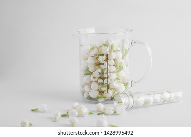 Transparent lab beaker and test tube filled with fresh white jasmine flowers with some jasmine spilled on white