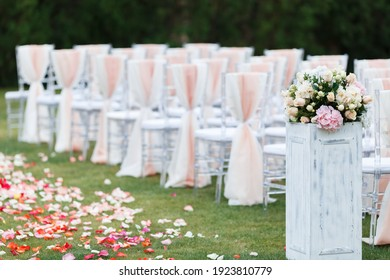 Transparent stylish plastic chairs. Luxury decor for the white wedding ceremony.