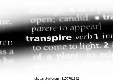 transpire word in a dictionary. transpire concept.